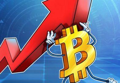 El Bitcoin sufrió un golpe, ¿cómo reaccionó el ecosistema de las criptomonedas?